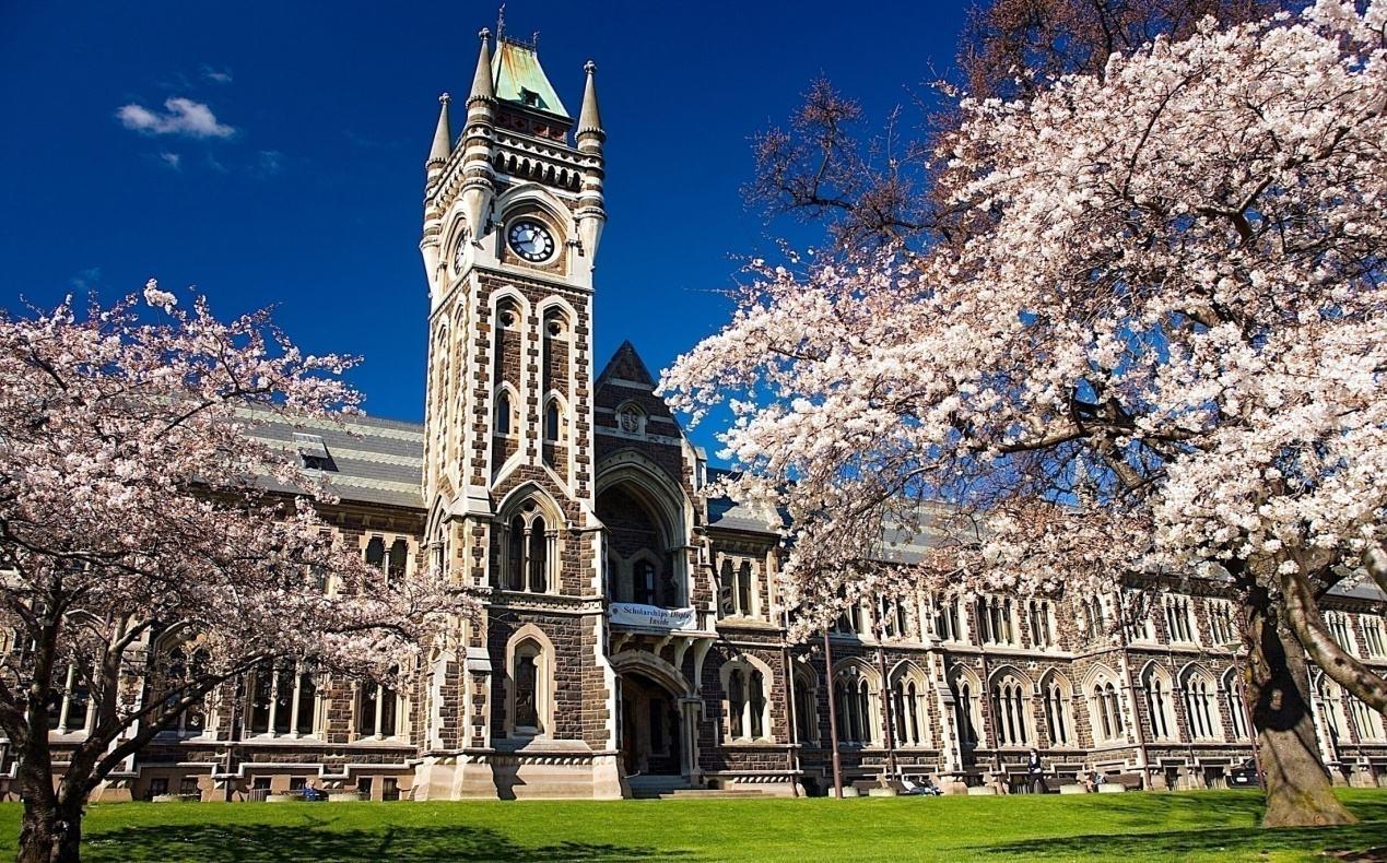 上海蓝带厨艺学院学费_澳洲蓝带学院本科_新西兰蓝带学院